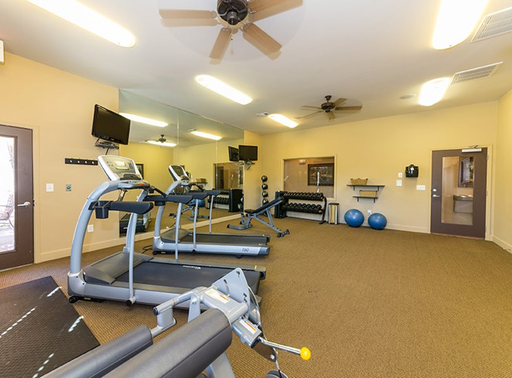 Cardio and Weights in Fitness Center