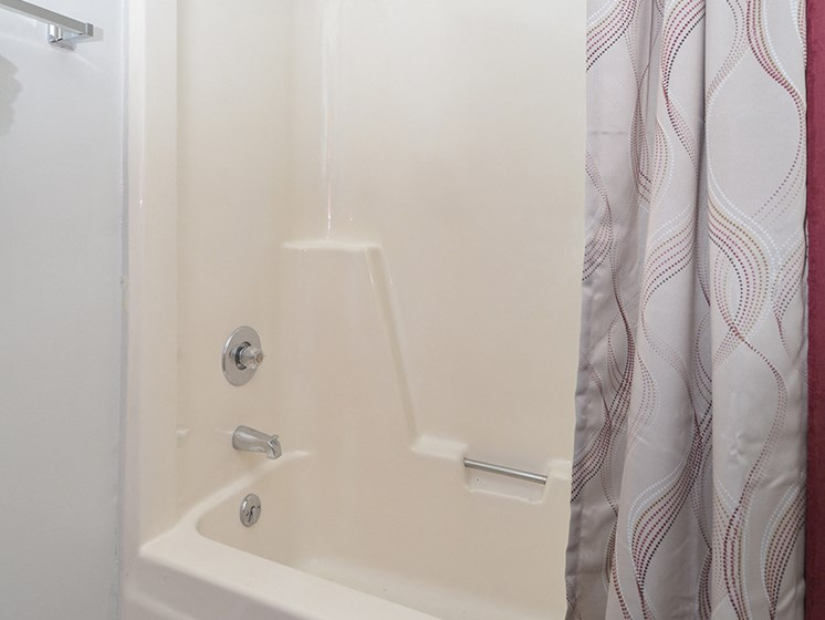 Shower with Tub