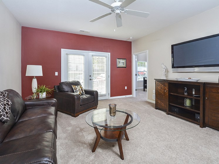 Living Room Accent Wall and Ceiling Fan