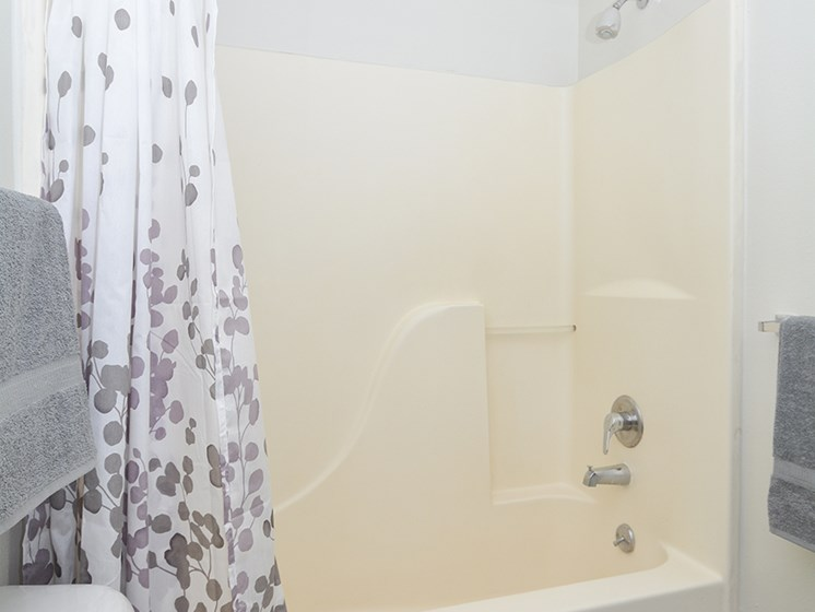 Spacious Shower and Tub