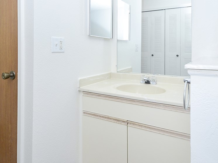 Large Bathroom Sink