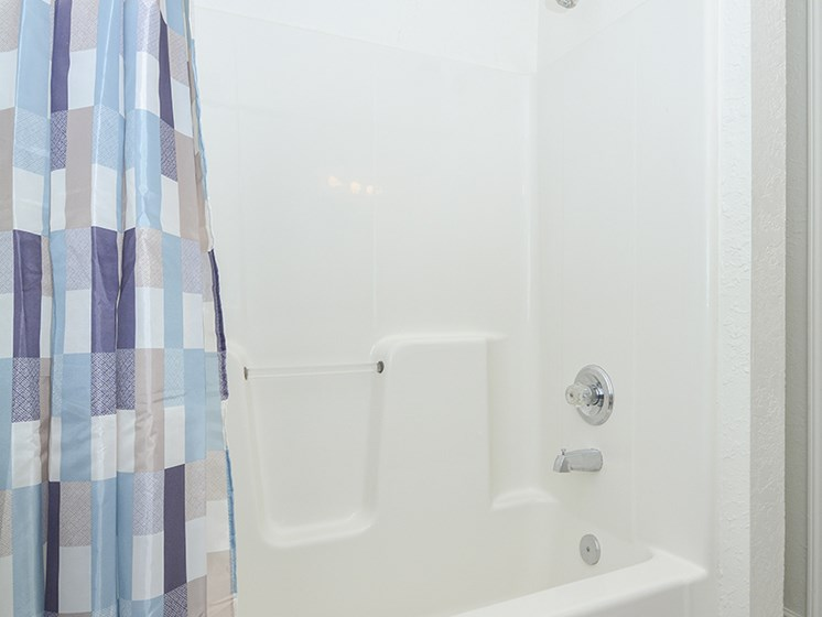 Large Shower and Tub