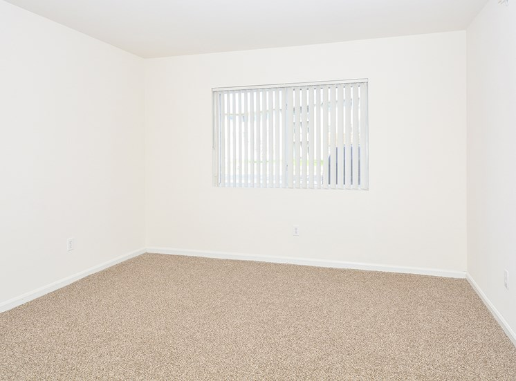 Carpeted Bedroom and Window