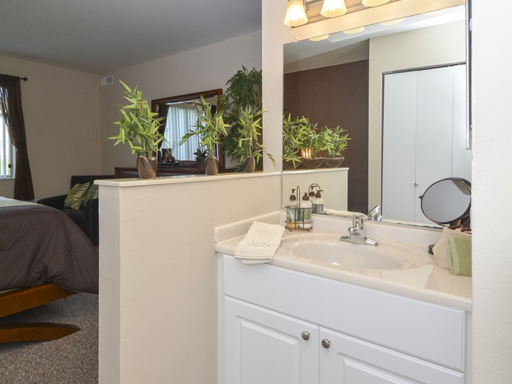 Bathroom Sink with Large Vanity and Partial Privacy Wall