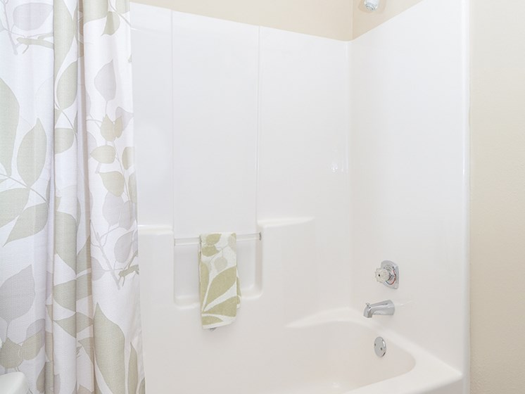 Large Shower with Tub
