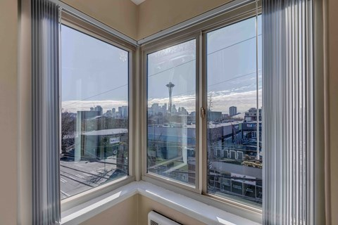 Seattle Needle View