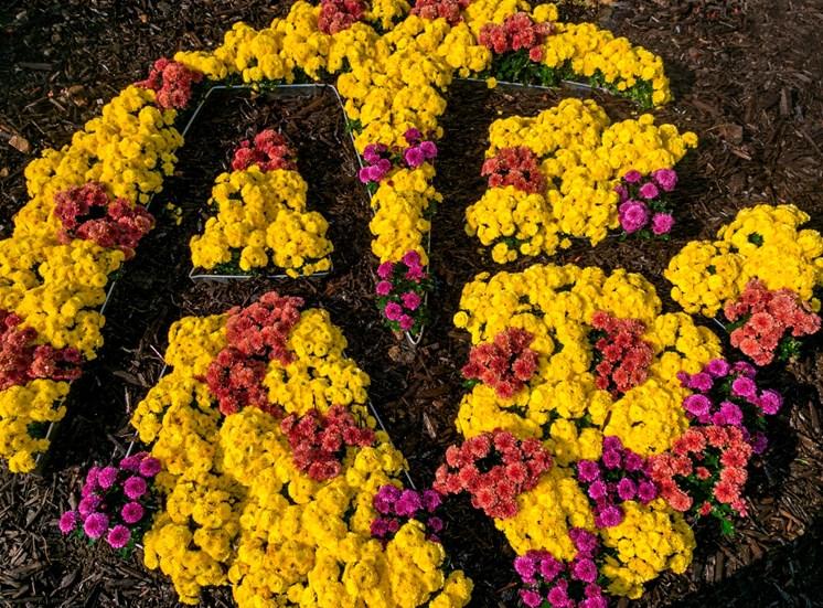 AR made of flowers