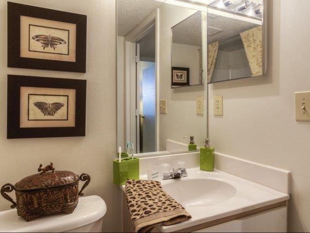 Bathroom Mirror at Brannigan Village Apartments, Winston Salem