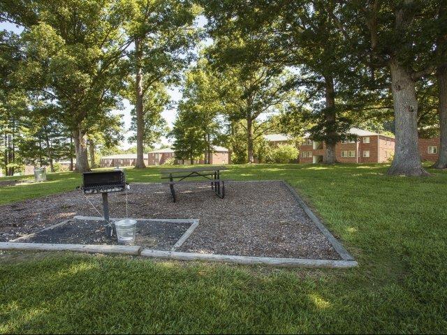 Backyard at Ascot Point Village Apartments, Asheville, NC, 28803