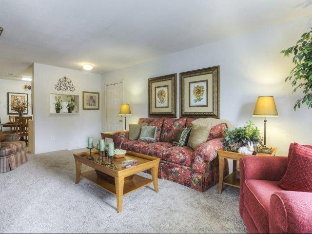 Luxurious Living Room interiors at Ascot Point Village Apartments, Asheville