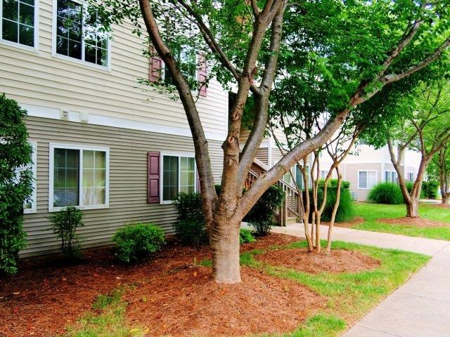 Partial Sun Backyard at Broadstone Village Apartments, High Point, North Carolina