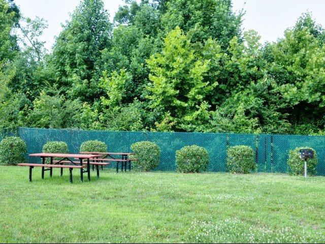 Back Fence on Lush Green Lawn
