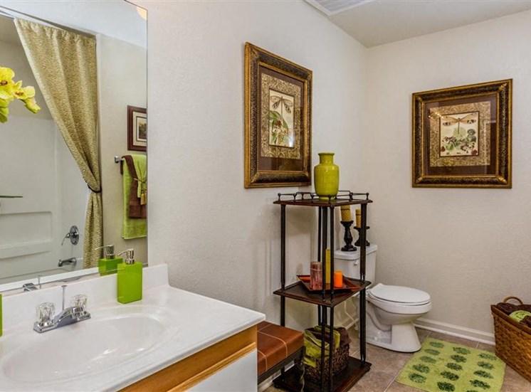 Spacious Bathrooms at Hidden Creek Village Apartments, Fayetteville