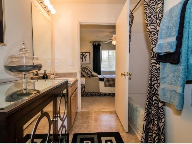 Luxury Bathrooms at Deer Meadow Village Apartments, Columbia, 29209