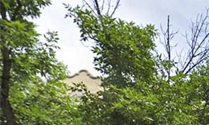 1200 W. Pratt Blvd. Studio-2 Beds Apartment for Rent Photo Gallery 1