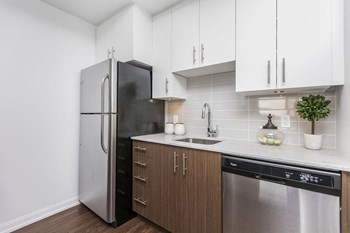 236 Richmond Road Studio-2 Beds Apartment for Rent Photo Gallery 1