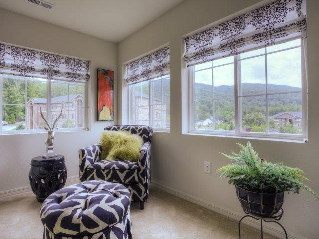 Plenty of Natural Light at Berrington Village Apartments, Asheville, NC