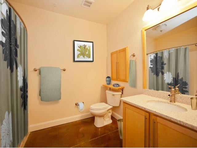 Bathroom Accessories at CityView Apartments, North Carolina, 27406