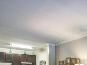 Classic Living Room at Bacarra Apartments, North Carolina