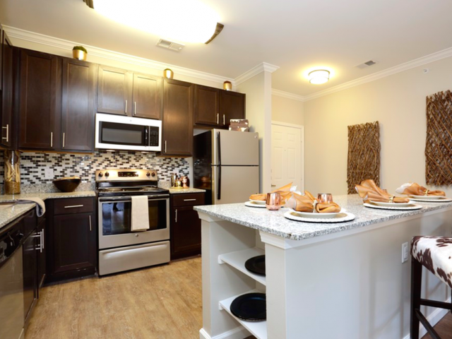 Luxury Kitchen Appliances at Arrington Ridge, Round Rock