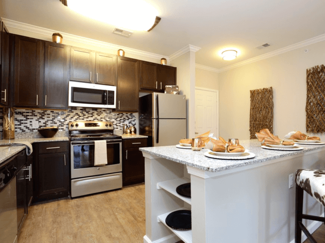 Luxury Kitchen Appliances at Arrington Ridge, Round Rock