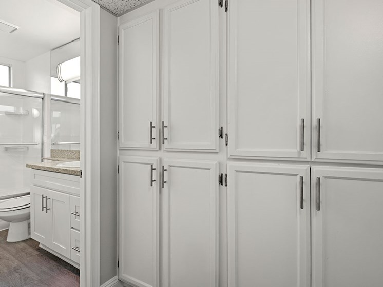 Copious and well designed in-unit storage.