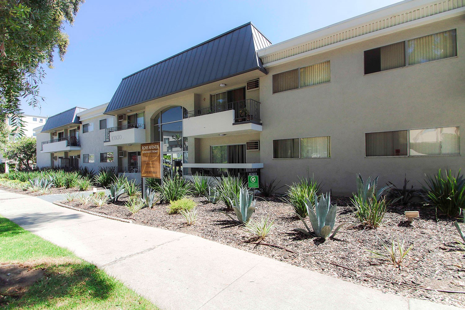 Drought-tolerant greenery decorating the entrance to Rose Apartments.