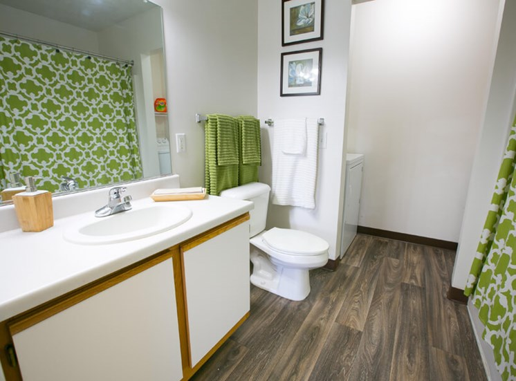 bathroom at The Village of Western Reserve Apartments in Streetsboro, OH