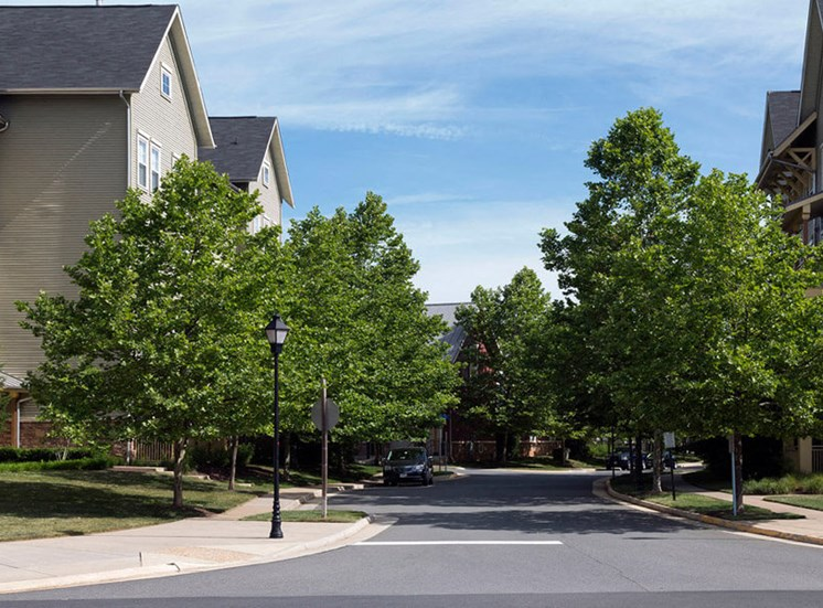 Plenty of parking and tree lined streets at Westwind Farms Apartments in Ashburn, VA