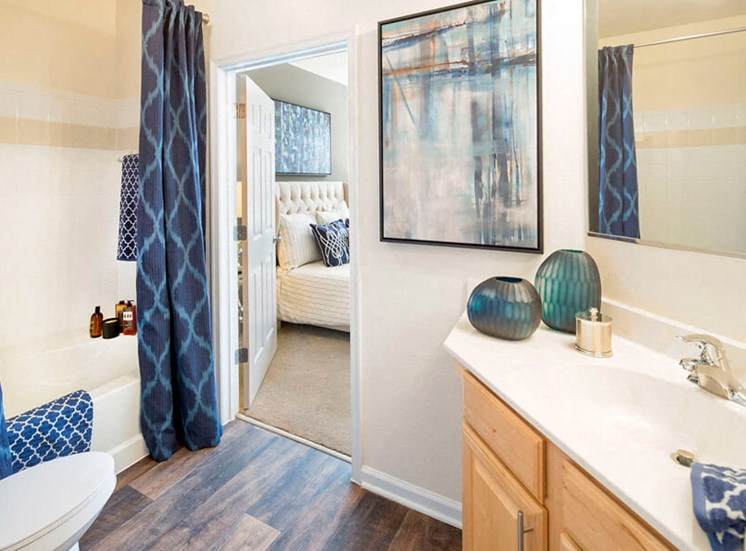 Private bathroom attached to the master bedroom at Westwind Farms Apartments in Ashburn, VA