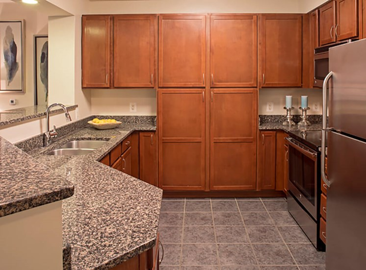 Chef inspired kitchens at The Alexander Apartments in Alexandria, VA