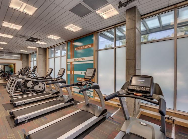 State Of The Art Fitness Center at Equinox, Seattle, Washington