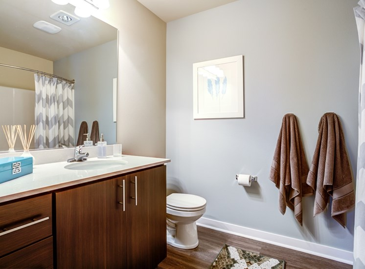 Spa Inspired Bathrooms at Bailey Farm, Bothell, 98012