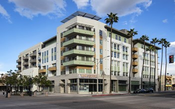 3750 Main Street Studio-2 Beds Apartment for Rent Photo Gallery 1
