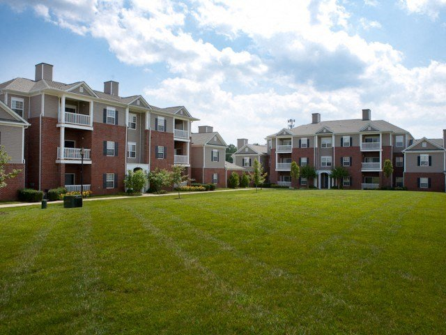 Open green field space at  The Belvedere Apartments in Richmond, VA