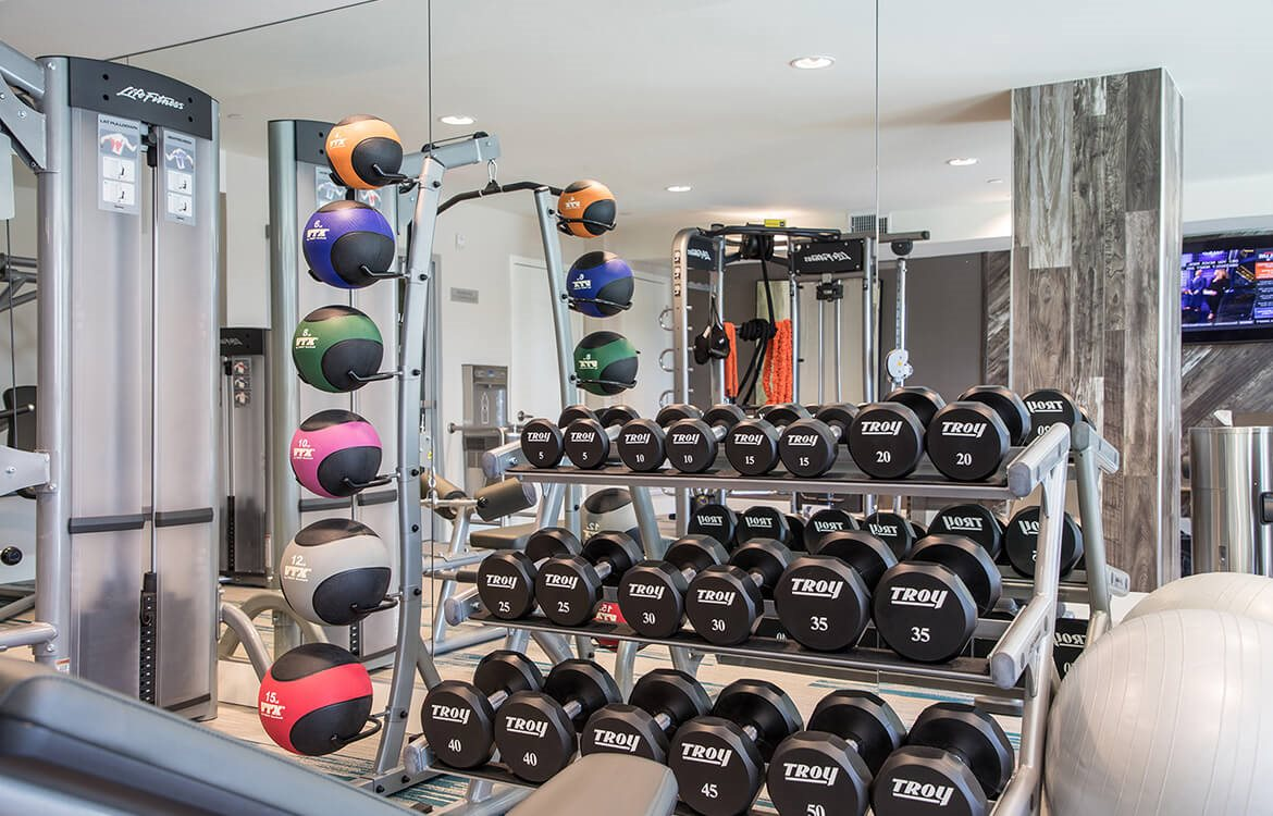 Fitness center with weights and medicine balls at Areum Apartments in Monrovia CA