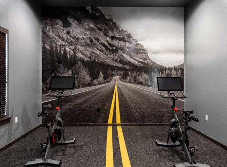 Cycle room with two peleton bikes