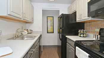 1017 S Birch St 1 Bed Apartment for Rent Photo Gallery 1