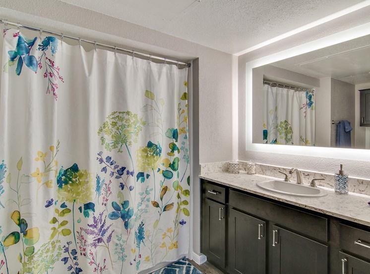 Designer Bathroom at The Village at Bunker Hill in Houston, Texas