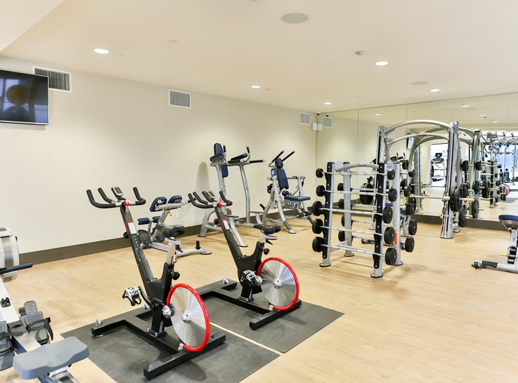 Fitness Center with Free Weight at Fashion Center, Arizona