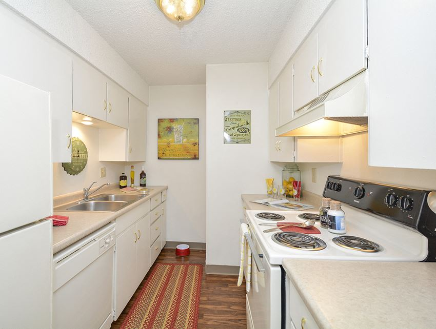Classic Apartment Kitchen Style