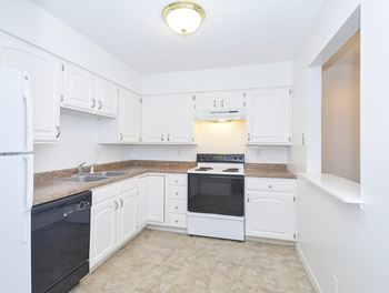 254 Northpointe Drive NE 2 Beds Apartment for Rent Photo Gallery 1