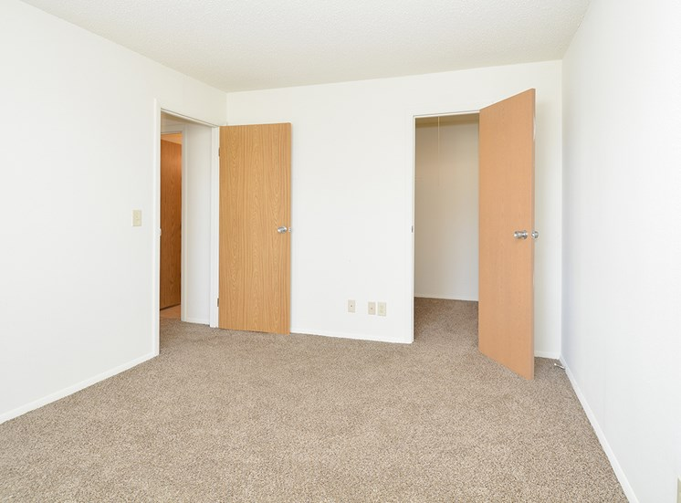Walk-In Closets in Bedrooms