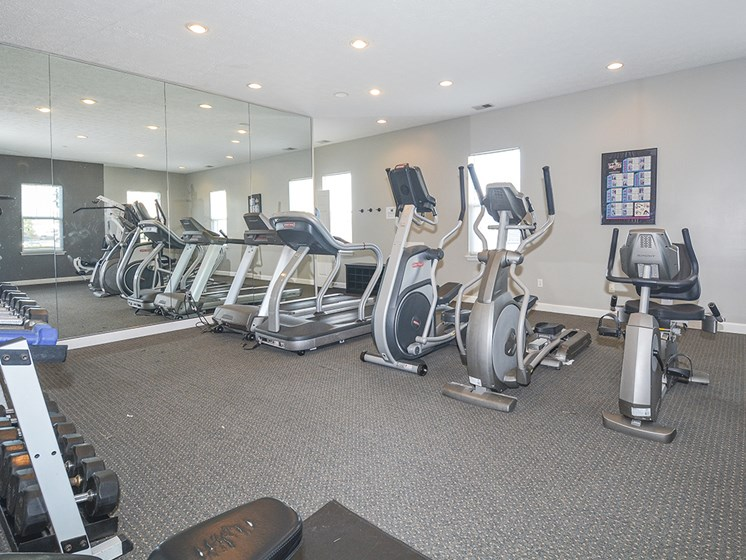 Cardio Equipment and Floor to Ceiling Mirrors at the Fitness Center