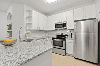 1131 Courtney Trace Dr 1-3 Beds Apartment for Rent Photo Gallery 1