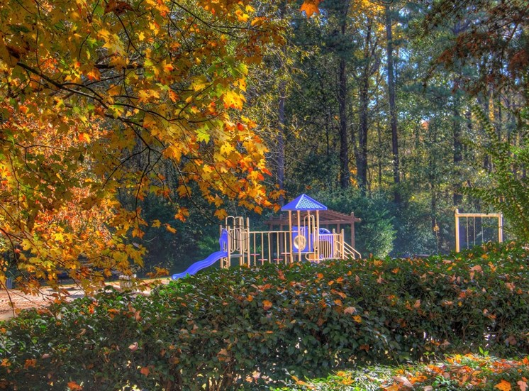 Luxury Apartments in Lithia Springs| Wesley Trevento Apartments | Playground