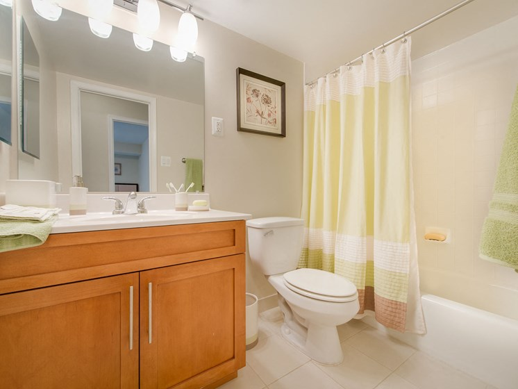Bathroom with large mirror and sink area with storage cabinets, bathtub, and toilet at Amberleigh apartments in Fairfax, Virginia 22031