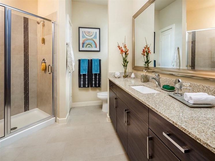 Master bathroom with access to walk-in closet, double vanity and standing shower