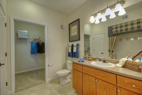bathroom with light brown cabinets and tan countertops with attached walk in closet