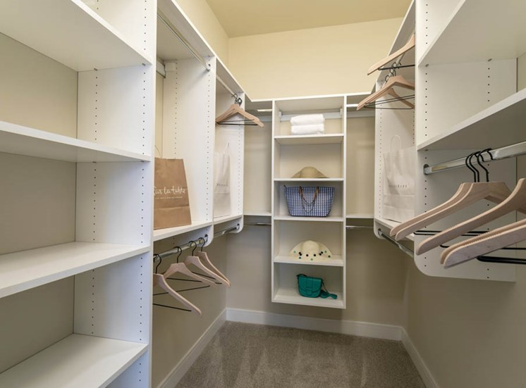Built-in storage organization solution